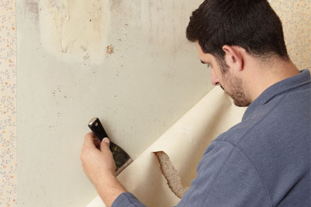 Quad Cities Wallpaper Stripping